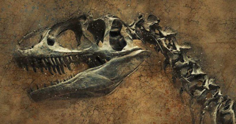 Общество: Палеонтологи нашли в Британии два новых хищных вида динозавров