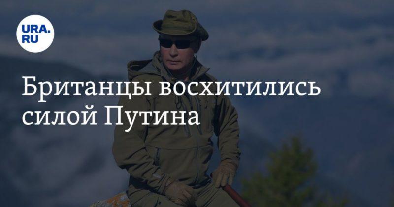 Общество: Британцы восхитились силой Путина