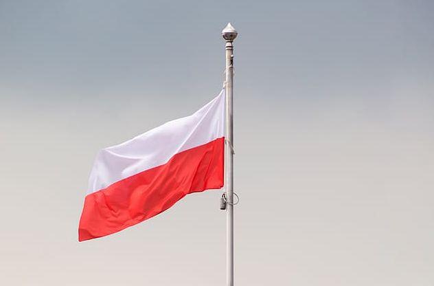 Общество: Выползов: Униженные в Великобритании и Германии поляки стали отыгрываться на украинцах