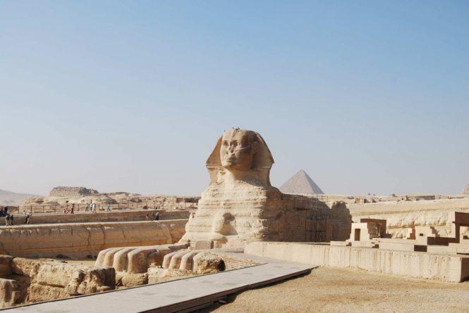 Общество: В Великобритании на аукционе продали садовые статуи, оказавшиеся египетскими артефактами